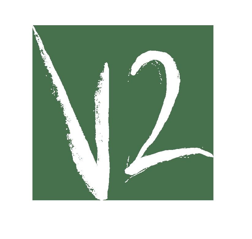 V2 Fitness